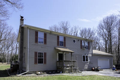 Jim Thorpe Single Family Home For Sale: 320 Wild Creek Dr