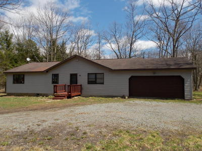 Jim Thorpe Single Family Home For Sale: 38 Martha Ln