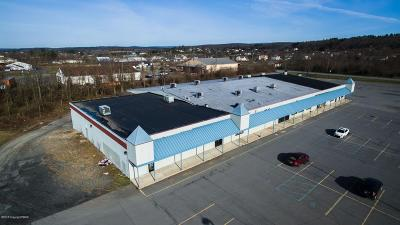 Brodheadsville Commercial For Sale: 137 Erin Ln