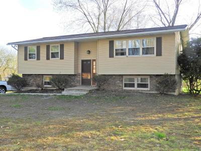 Stroudsburg Single Family Home For Sale: 2003 Linwood Drive