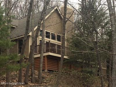 Tannersville Single Family Home For Sale: 772 Lower Deer Valley Rd