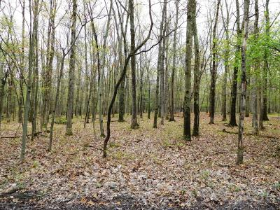 East Stroudsburg Residential Lots & Land For Sale: 46 Terrapin Trail