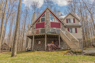 Pocono Lake Single Family Home For Sale: 242 Mountain View Dr.