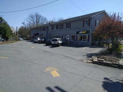 Stroudsburg Commercial For Sale: 136 N 9th