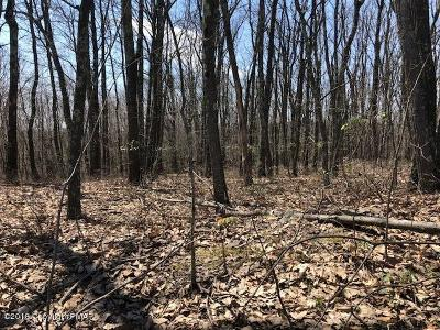 Stroudsburg Residential Lots & Land For Sale: Lot 11 McMichaels Ct