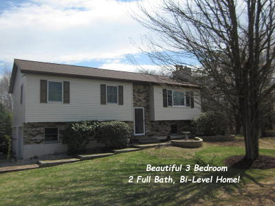 Blakeslee Single Family Home For Sale: 1221 Allegheny Dr