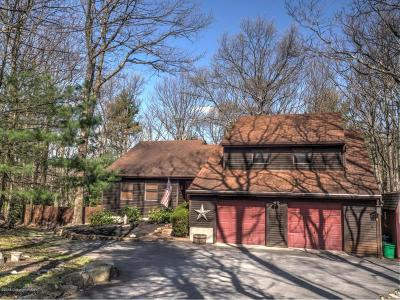 Tannersville Single Family Home For Sale: 3282 Birch Hill Dr