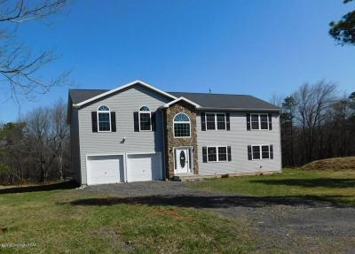 Blakeslee Single Family Home For Sale: 107 Center Dr