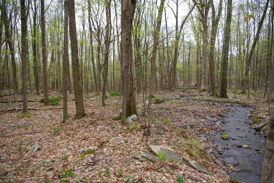East Stroudsburg Residential Lots & Land For Sale: Valhalla View Dr
