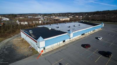 Brodheadsville Commercial For Sale: 137 Erin Lane