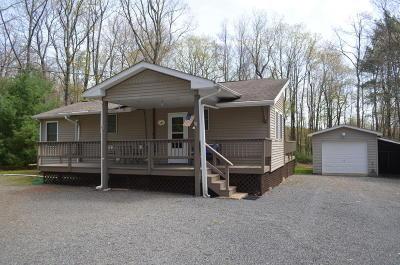 Jim Thorpe Single Family Home For Sale: 29 Hopi Rd