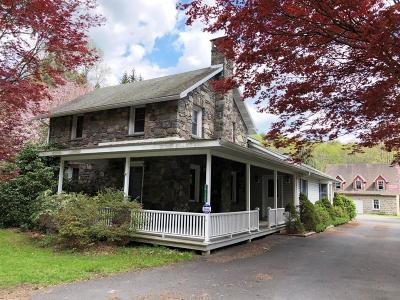 Tannersville Commercial For Sale: 2720 Route 715