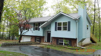 East Stroudsburg Single Family Home For Sale: 4103 White Birch Dr