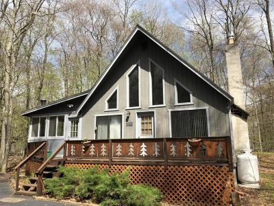 Locust Lake Village Single Family Home For Sale: 190 Tommys Ln