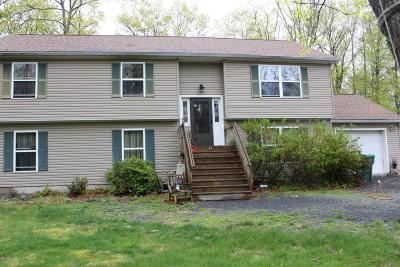East Stroudsburg Single Family Home For Sale: 6076 Little Bear Ln