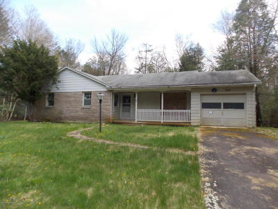 Albrightsville Single Family Home For Sale: 94 Holiday Dr