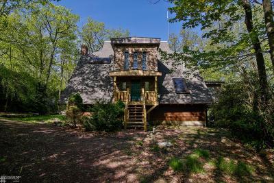 Jim Thorpe Single Family Home For Sale: 32 Tupelo St