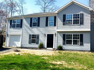 East Stroudsburg Single Family Home For Sale: 208 Timberline Dr