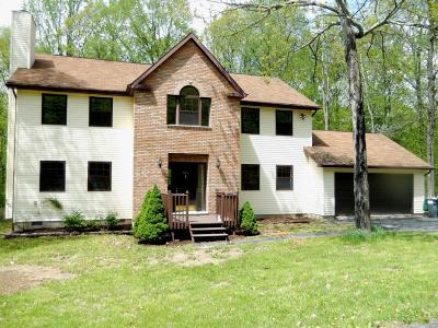 East Stroudsburg Single Family Home For Sale: 2613 Beanpole Rd