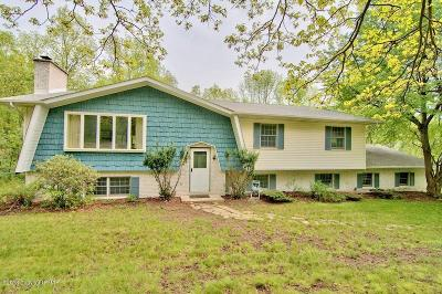 Tannersville Single Family Home For Sale: 5122 Woodland Drive