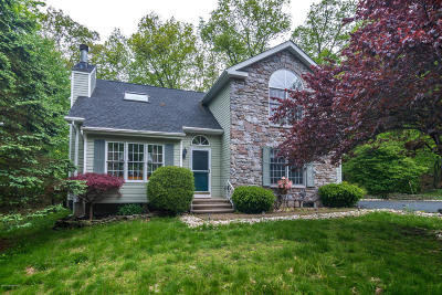 East Stroudsburg Single Family Home For Sale: 133 Reunion Rdg