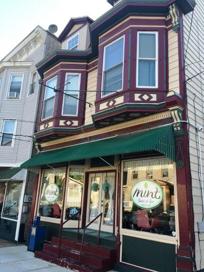 Jim Thorpe Multi Family Home For Sale: 531 North St