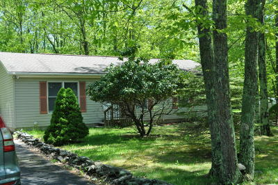 East Stroudsburg Single Family Home For Sale: 12052 Maplewood Dr