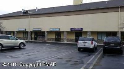 Stroudsburg Commercial For Sale: 1619 N. 9th (Unit 10) St