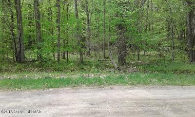 Monroe County Residential Lots & Land For Sale: 20-6712 Pontiac Path Path