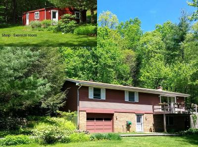Effort PA Single Family Home For Sale: $224,900