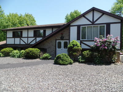 East Stroudsburg Single Family Home For Sale: 25 Russell Ridge Rd