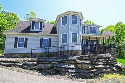 East Stroudsburg Single Family Home For Sale: 314 Reagan Dr