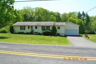 Stroudsburg Single Family Home For Sale: 2246 Mountain Rd
