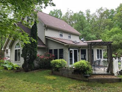 Effort Single Family Home For Sale: 117 Aldean Dr