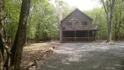 Lake Harmony Single Family Home For Sale: 20 Vista Ln