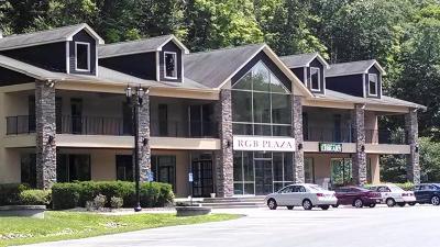 East Stroudsburg Commercial For Sale: 507 Seven Bridge Road
