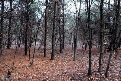 Stroudsburg Residential Lots & Land For Sale: Green View Dr/Sr 3022 #1