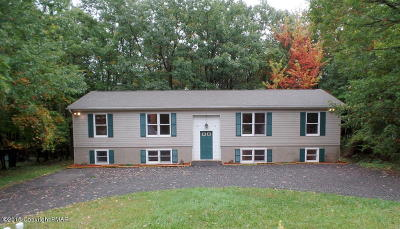 Mount Pocono Rental For Rent: 22 Mountain Dr