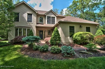 Tannersville Single Family Home For Sale: 3245 Mountain View Dr