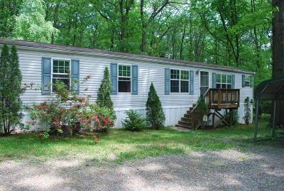 Saylorsburg Single Family Home For Sale: 315 Vista Cir
