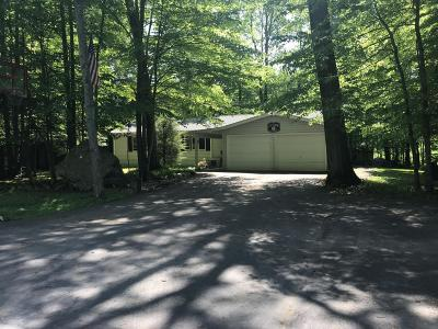 Pocono Lake Single Family Home For Sale: 1205 Blackberry Rd
