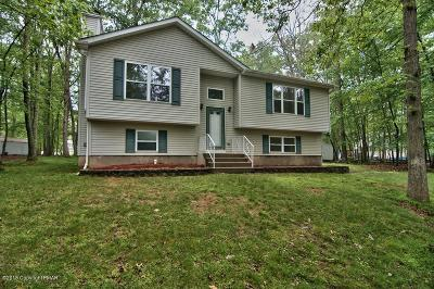 East Stroudsburg Single Family Home For Sale: 1120 Hunters Woods Drive