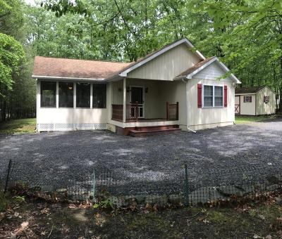 East Stroudsburg Single Family Home For Sale: 3436 Skycloud Dr
