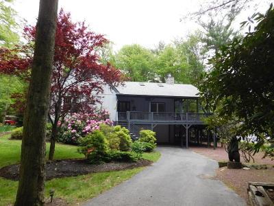 Lake Harmony Single Family Home For Sale: 119 N Lake Dr