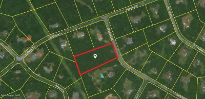 Brodheadsville Residential Lots & Land For Sale: #13 Idlewood Dr