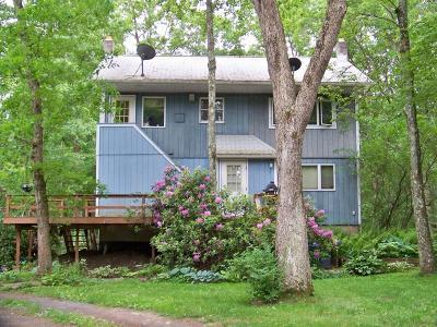 Stroudsburg Rental For Rent: 192 Wellington Rd #Unit 1