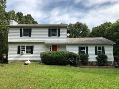 East Stroudsburg Single Family Home For Sale: 191 Kings Pond Rd