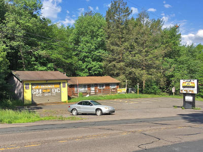 Blakeslee Commercial For Sale: 5119 Route 115