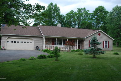 Brodheadsville Single Family Home For Sale: 508 Creek View Ln