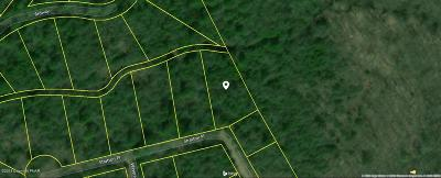 Mount Pocono Residential Lots & Land For Sale: 152-154 Stratton Place